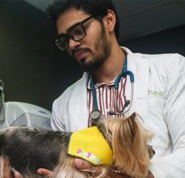 Dr. Junior Rafael Morel Tejeda